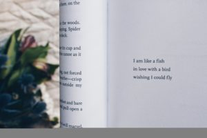 A Beginners Guide to Poetry www.zwanniebooks.com